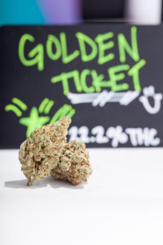 goldenticket-1-2